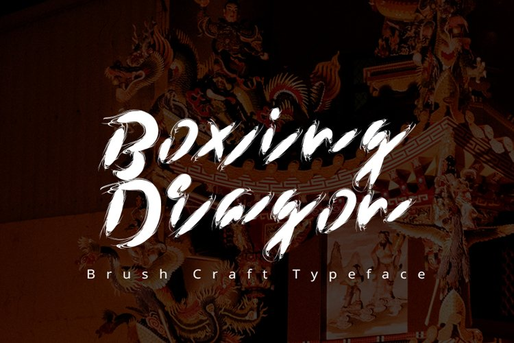 Boxing dragon | Modern Typeface Font example image 1