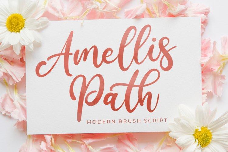 Amellis Path - Brush Script Font example image 1