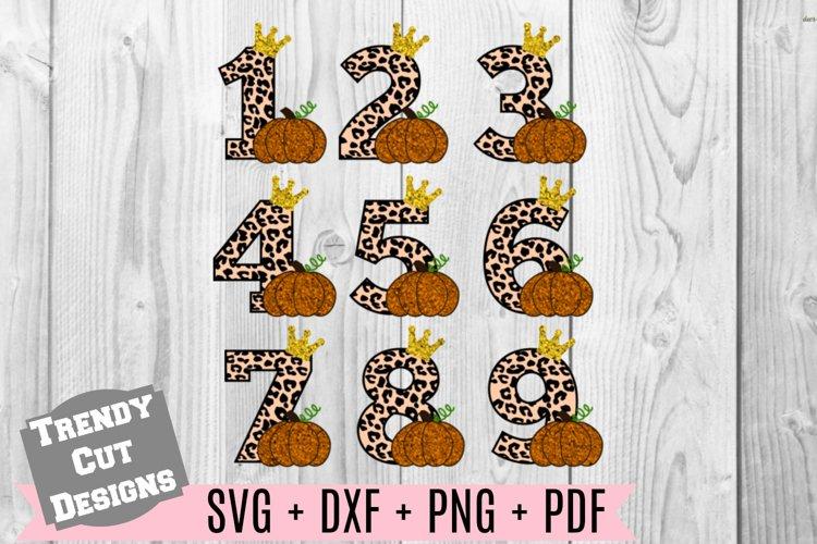 Bundle, Pumpkin Number Birthday Set, Cheetah Print, Crown SV