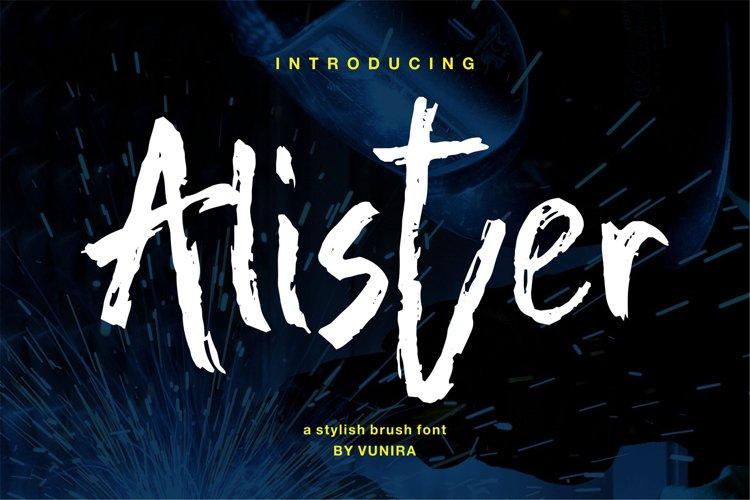 Alister   A Stylish Brush Font example image 1