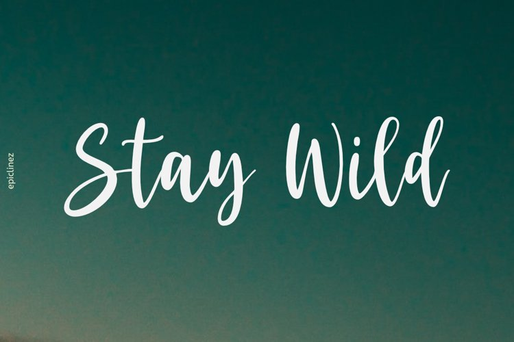 Stay Wild | Stunning Script Font example image 1