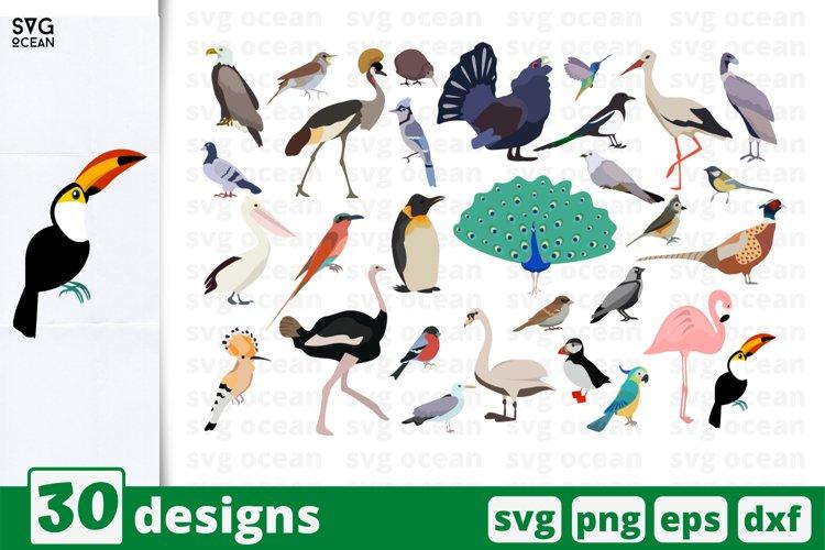 Bird SVG Bundle, Birds cut file, birds clipart, silhouette