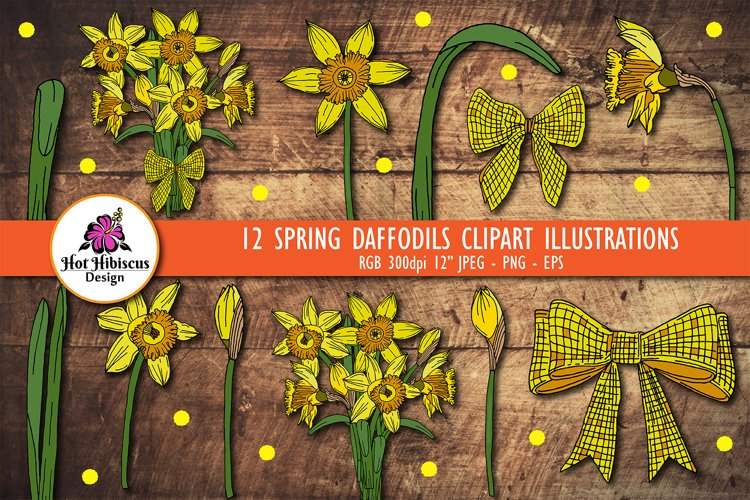 Daffodil Clipart   Spring Daffodil Flowers Bundle example image 1