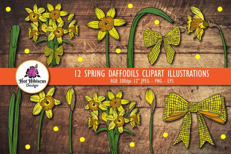 Daffodil Clipart | Spring Daffodil Flowers Bundle