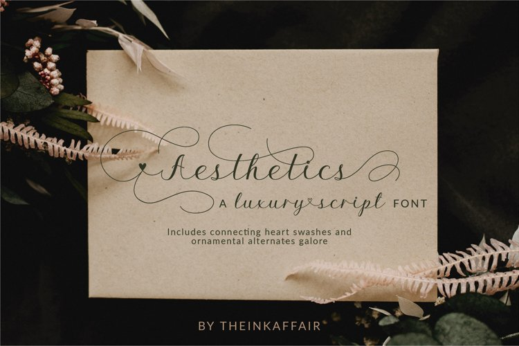 Aesthetics luxury script font example image 1