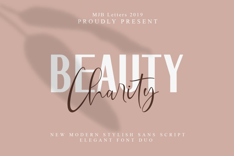 Beauty Charity // Elegant Paired Duo example image 1