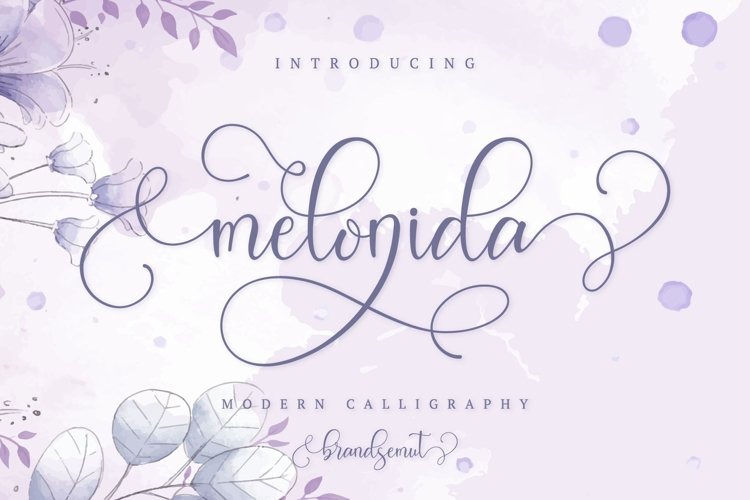 Melonida || Lovely Script Font example image 1