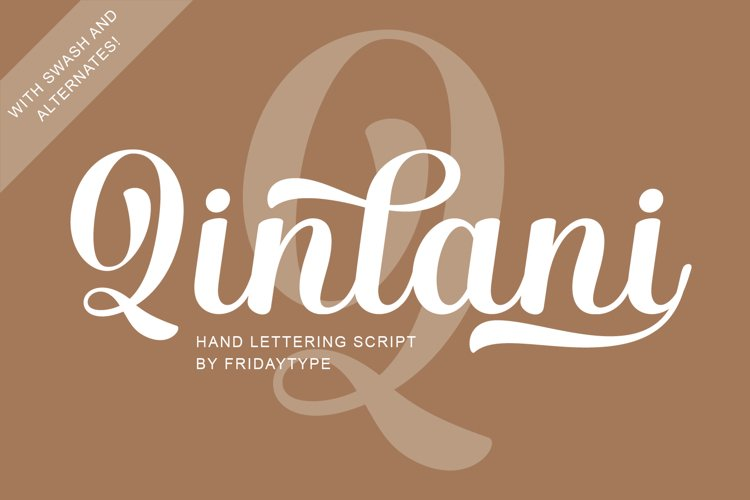 Qinlani - Hand Lettering Script example image 1