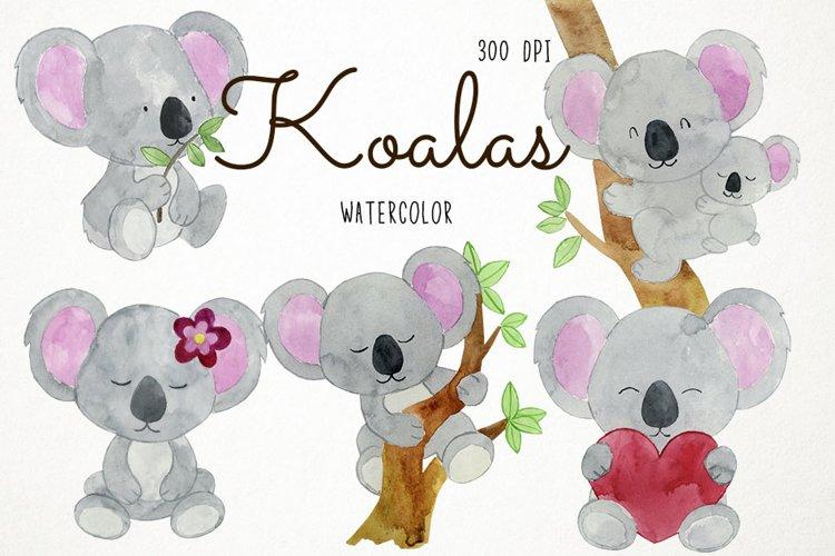 Watercolor Koalas Clipart Koalas Clip Art, Australian example image 1
