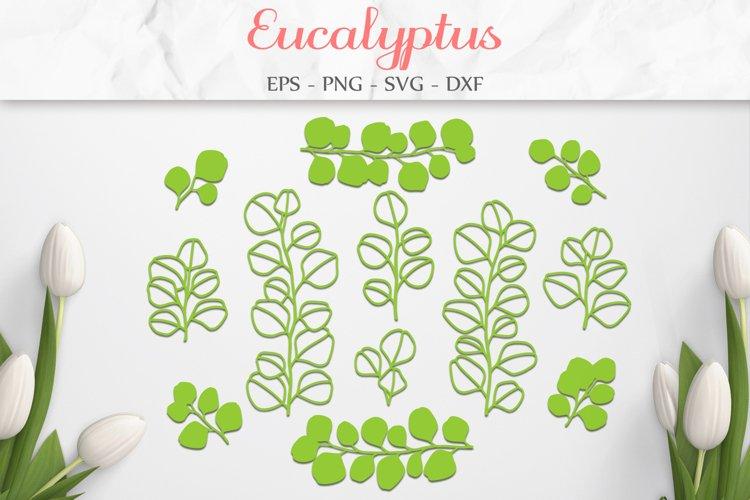 Eucalyptus SVG, Leaves SVG, Eucalyptus Leaf, Branch SVG