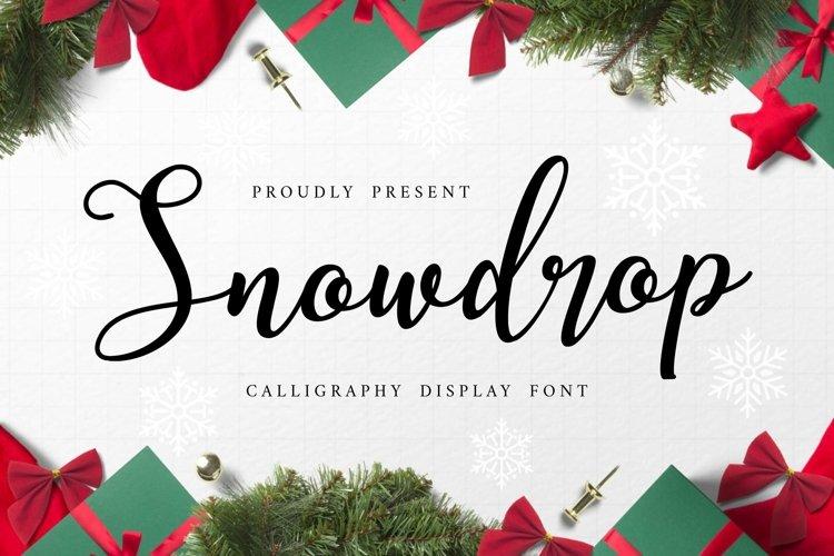 Web Font Snowdrop example image 1