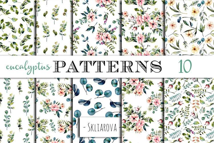 Eucalyptus Patterns example image 1