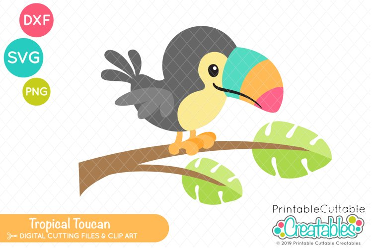 Tropical Toucan SVG example image 1