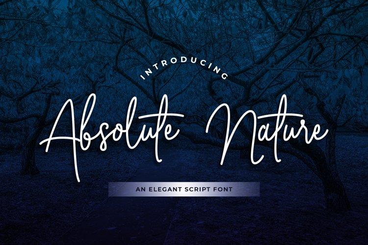Absolute Nature Handwritten Script Font example image 1