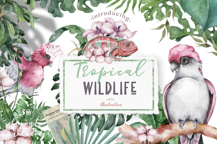 Tropical Wildlife Watercolor set