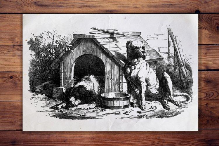 Vintage Dog Illustration, Animal Antique French Decor example image 1