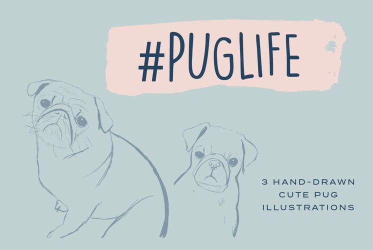 Pug Illustrations - Editable Humorous Funny Vector Pugs example image 1
