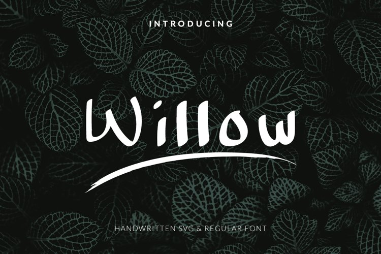 Willow Handwritten Font example image 1