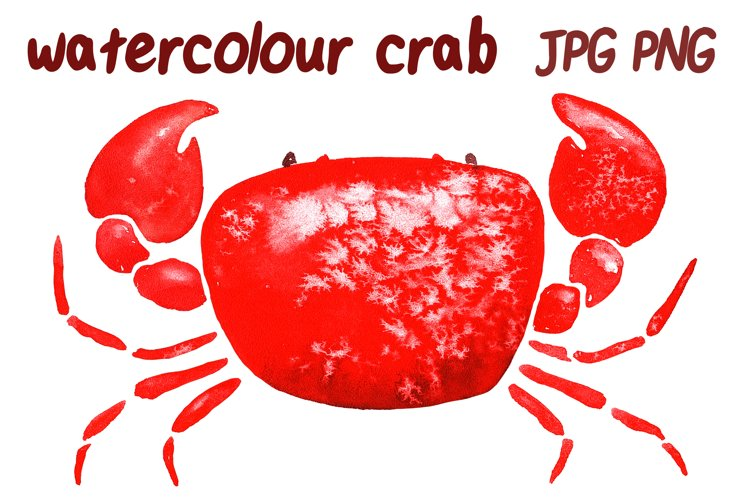 red watercolor crab isolated