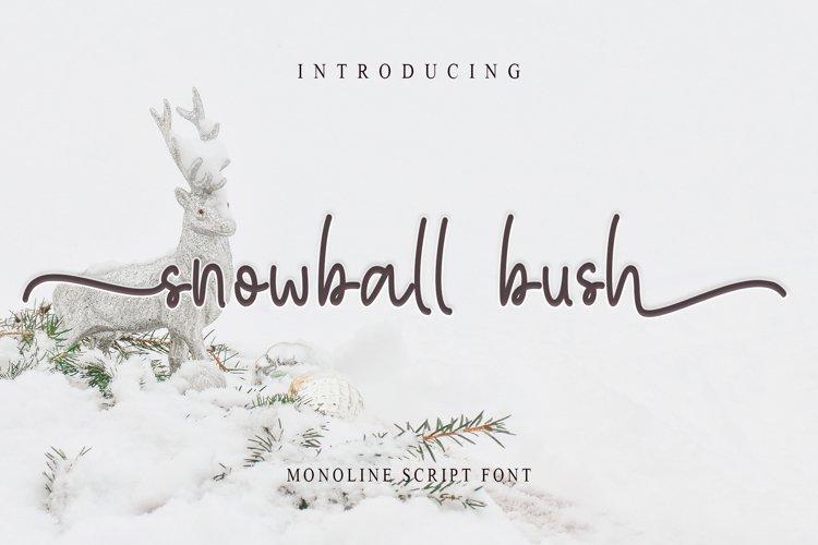 Snowball Bush example image 1