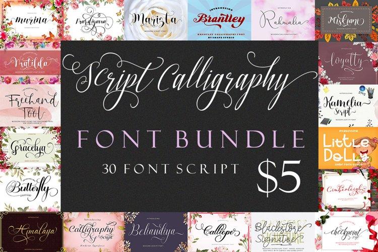 Script Calligraphy Bundle example image 1