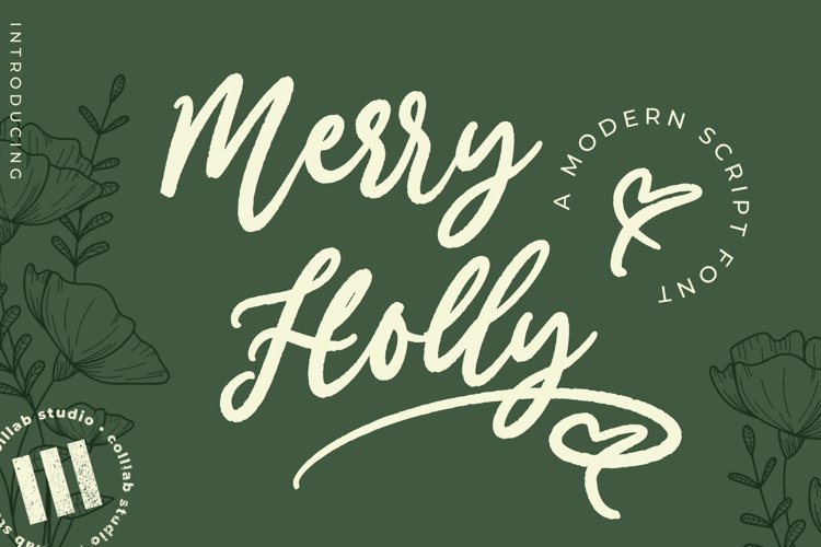 Merry Holly - A Modern Script Font example image 1