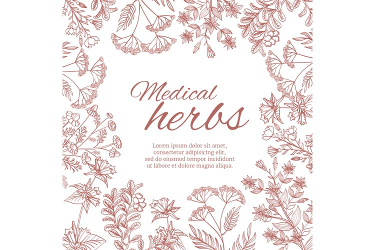 Vintage decorative background with medicinal organic healing example image 1