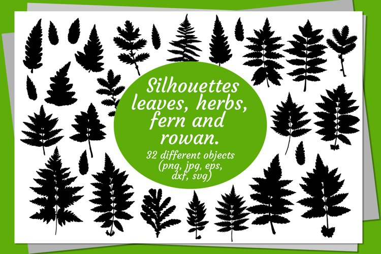 Silhouettes of leaves, herbs, leaves of fern and rowan.