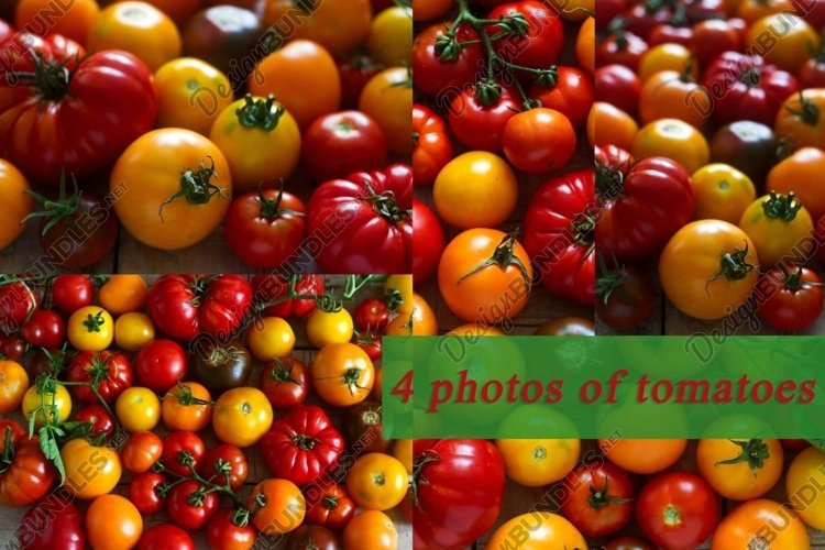 Tomatoes of different varieties. example image 1