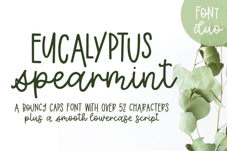 Eucalyptus Spearmint, A Smooth Monoline Font Duo