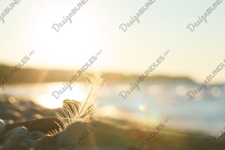Nature scene at sunset example image 1