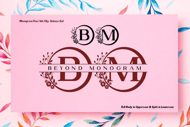 Beyond Monogram Font