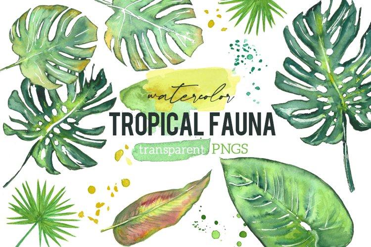 Tropical Jungle Fauna Leaf Watercolor Clip Art Illustrations