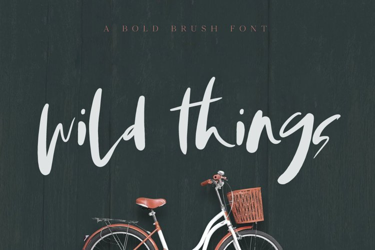 Wild Things Brush Font example image 1