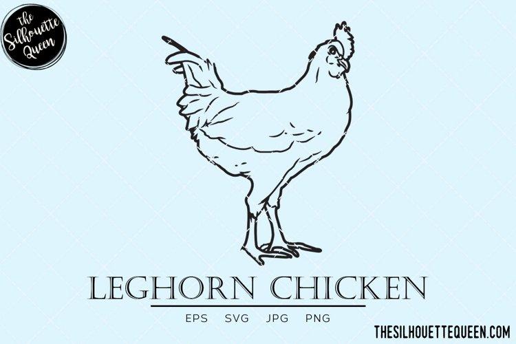 Leghorn Chicken Vector