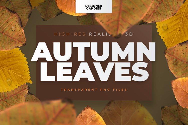 Autumn Fall Leaf PNGs