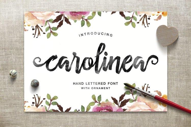 Carolinea Typeface example image 1