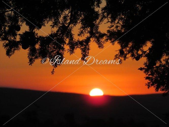Sunset Backdrop  example image 1