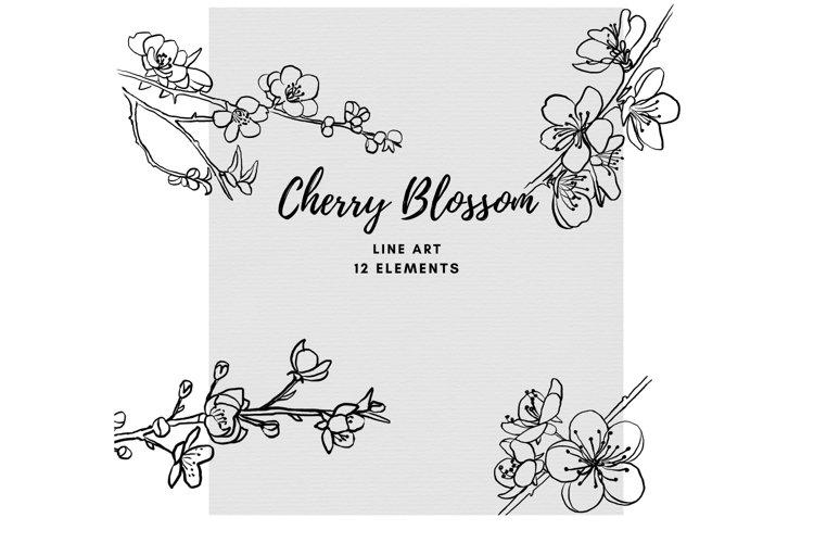 Cherry Blossom Ink Line Art Botanical Art