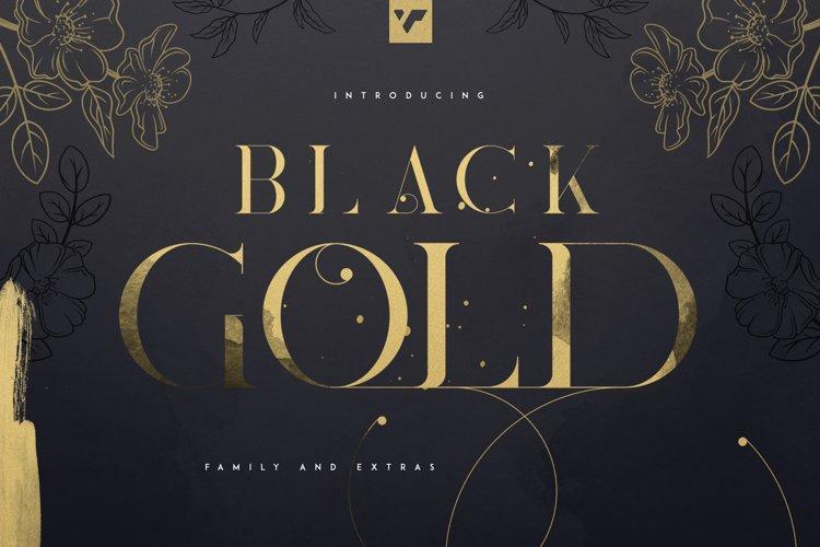 Update! Black Gold serif typeface example image 1