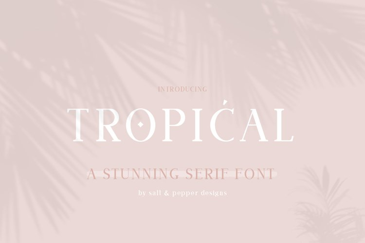 Tropical Serif Font example image 1