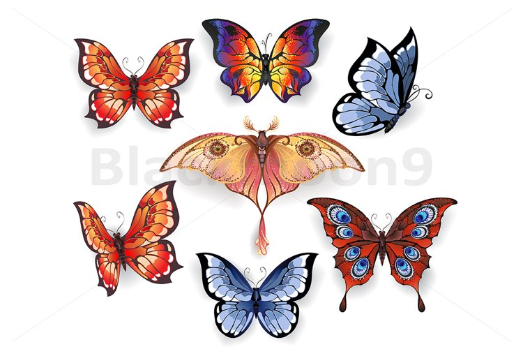 Set of Bright Exotic Butterflies example image 1