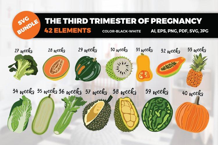 BUNDLE- The third trimester of pregnancy SVG Cut Files