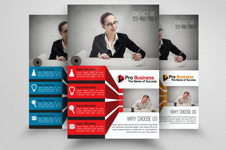Accounting Firm Flyer example image 1