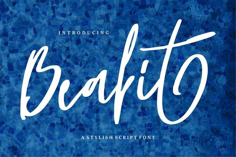 Beabit - A Stylish Script Font example image 1