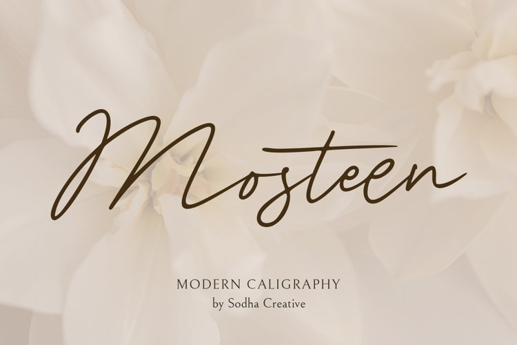 MOSTEEN - Romantic Font example image 1