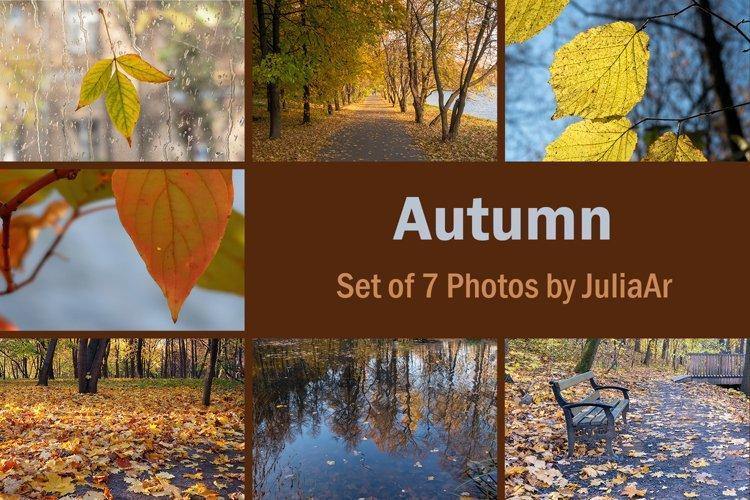 Set of 7 autumn photos. Leaves closeup and landscapes.