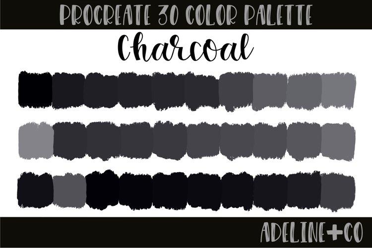 Charcoal Procreate color palette