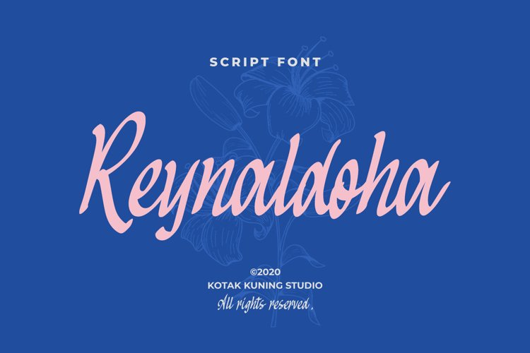Casual Script Font - Reynaldoha example image 1