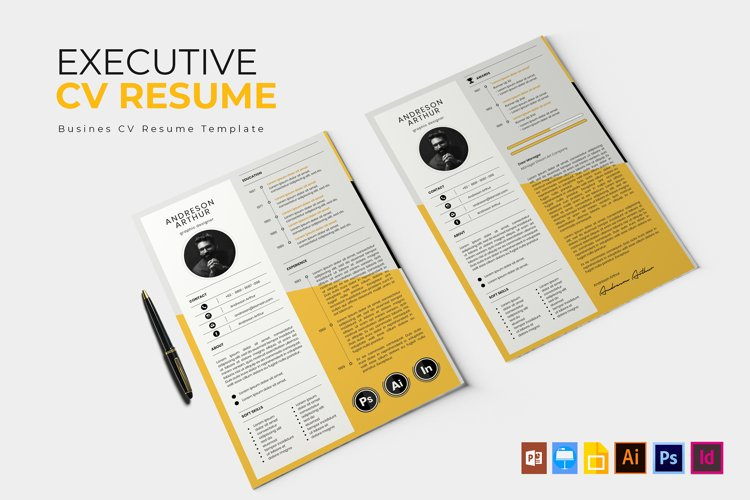 Executive Company   CV & Resume example image 1